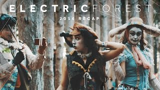 Electric Forest 2016: Divinity Recap Video