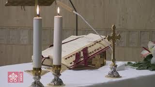 El Papa: pedir perdón es una medicina para la salud del alma