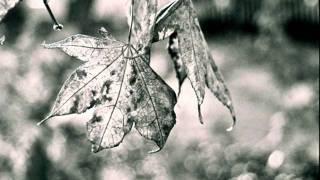 Ann Lennox - A 1000 Beautiful Things (Gabriel And Dresden Techfunk Mix)