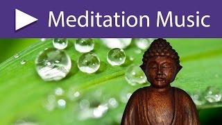 Best Mindfulness Meditation Music: 8 HOURS Relaxing Songs, Nature Sounds for Buddhist Meditation