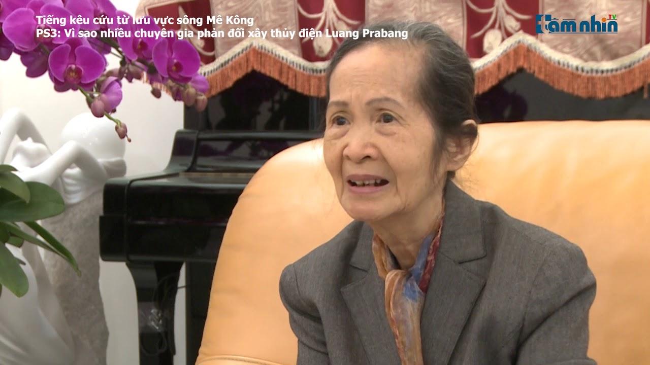 Tiếng kêu cứu từ lưu vực sông Mê Kông (PS3): Vì sao chuyên gia phản đối xây thủy điện Luang Prabang