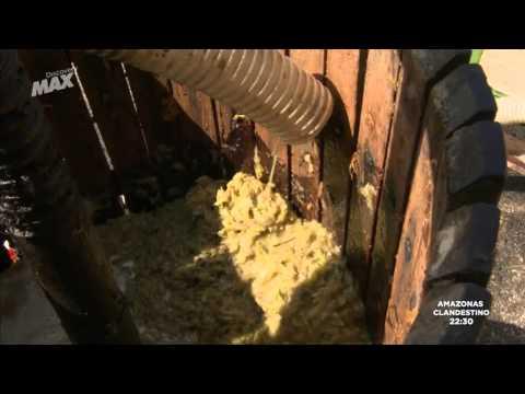 Como Se Hace El Vinagre Balsamico Modena