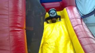 Chris Lisciandro bjj - Kids party bjjc