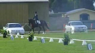 Dressage and Jumping to Music