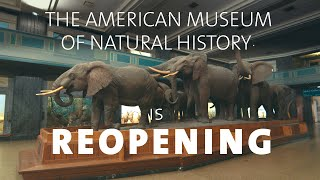 The American Museum of Natural History is Now Open!