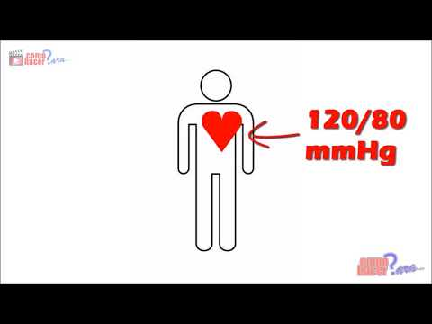 Efectos de los fármacos contra la hipertensión mecanismo