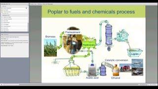Webinar: conversión del álamo híbrido en biocombustibles y bioquímicos