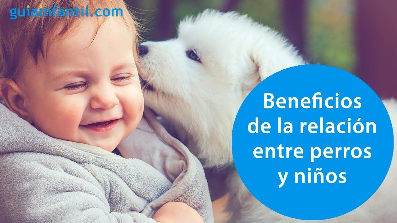 Cómo los perros aumentan la autoestima de los niños | Los beneficios de las mascotas