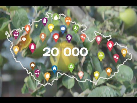 Mapa Na ovoce 2.0