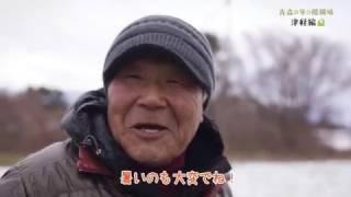 青森の冬の醍醐味津軽編