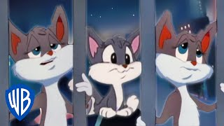 Animaniacs | Humans Don't Mean Much to Me Song | Classic Cartoon | WB Kids