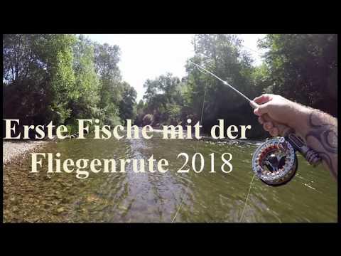Erste Fische mit der Fliegenrute am Fluß (HD)