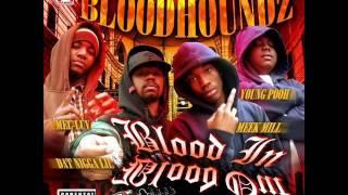BloodhoundZ - Respect My Gangsta