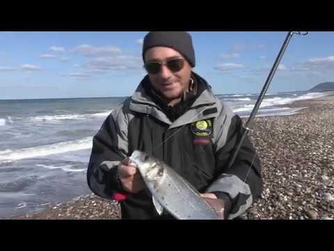 Sagome di piccoli pesci per pesca