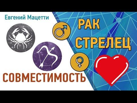 Рак и Стрелец. Гороскоп совместимости ♥ Любовный и сексуальный гороскоп