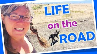 Solo Female Travel Vlog//Life On The Road, Errand Day in Colorado