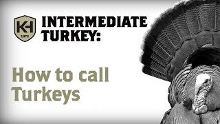 When and How to Call Turkeys: Intermediate Turkey Calling Tutorial