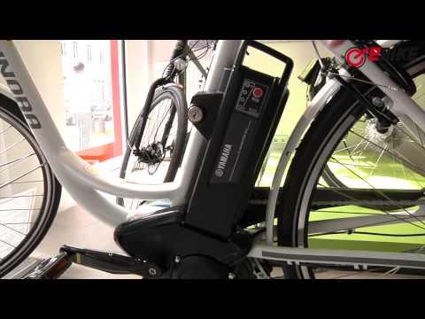 Elektrofahrradteile E-Bike 36V 11.6Ah Batterie Akku Fahrrad Leviatec Smartmotion Italjet Ridgeback Radsport