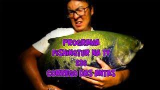 Programa Fishingtur na TV 236 - Pesqueiro Córrego das Antas