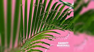 Barrett Marshall  -  Stupid (feat. v e i l)