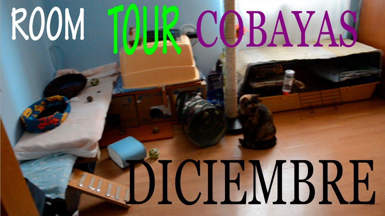 ROOM TOUR COBAYAS DICIEMBRE 2014 / CAMBIOS Y NOVEDADES EN LA HABITACIÓN DE LAS COBAYAS