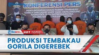 Rumah Produksi Narkoba Jenis Tembakau Gorila Digerebek Polisi, Omzet Capai Rp400 Juta per Bulan