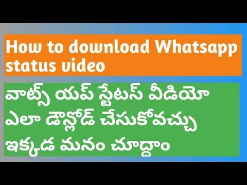 Whatts app status video download