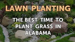 The Best Time to Plant Grass in Alabama