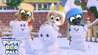 Bingo and Rolly's Winter Wonder Wish List | Puppy Dog Pals | Disney Junior