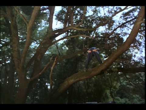Ace Ventura: When Nature Calls Movie Trailer