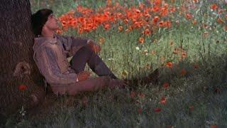 En este precioso día # This lovely day  - Donovan # Subtítulo. Español.