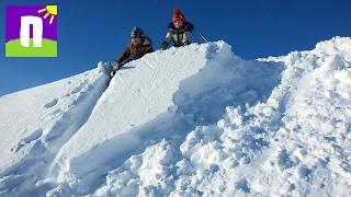 Накрыло снежной лавиной Потеряли лыжи Кругом лисьи следы