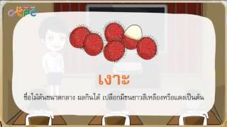 สื่อการเรียนการสอน สระเอาะ สระออ ป.2 ภาษาไทย