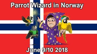 Parrot Wizard in Norway 2018