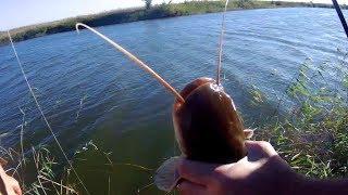 Зимняя рыбалка в волго ахтубинской поймы