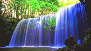 🔴Beautiful Relaxing Music LIVE 24/7: Music for Stress Relief. Meditation Music. Spa music