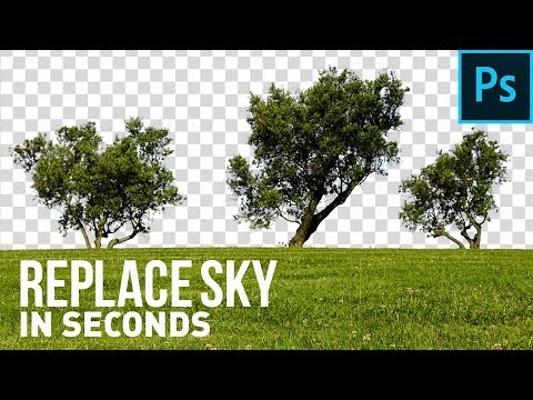 Crazy Trick To Replace Sky in Seconds! – Photoshop Tutorial