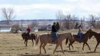 I want a Cowboy- Reba McEntire
