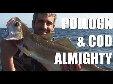 Fieldsports Britain – Wreck fishing, and rabbitting with a cowboy  (episode 124)