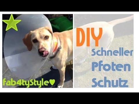 DIY Schneller Pfotenschutz Bettys Hunde