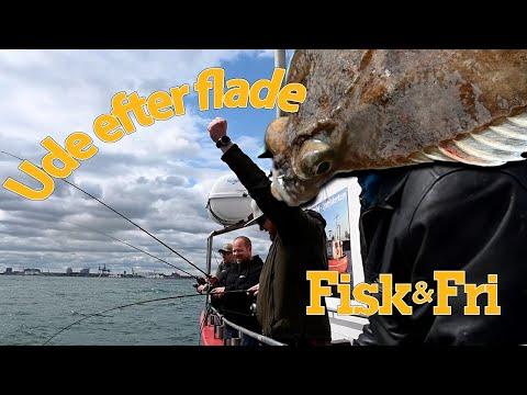 NY VIDEO: SÅDAN FANGER DU RØDSPÆTTER