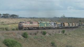 preview picture of video 'EMD and ALCO : ElZ at Murgheboluc : Australian trains and railroads'