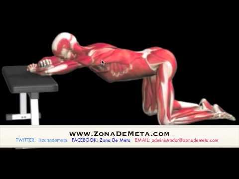 El aparato ortopédico en el codo