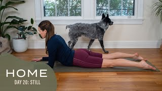 Home-Day 20-Still | 30 Days of Yoga With Adriene