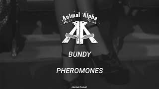 Bundy (Sub. Español) // Animal Alpha