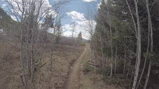 Sun Dog's Blog: Mountain bike trail update on Cinco de Mayo Eve. 1st local ride of the season!