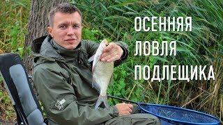 Метод для ловля леща фидером осенью