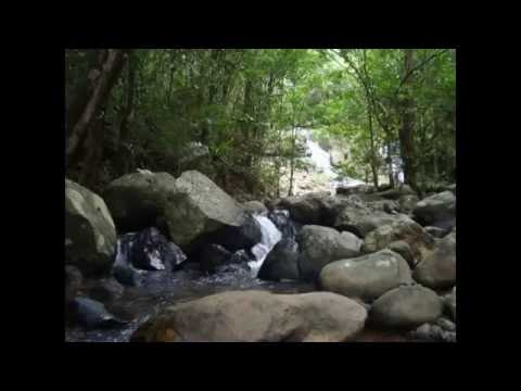 Flores Adventure - Cunca Wulang Waterfall Mp3