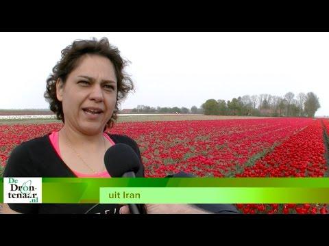 Organisatie Tulpenroute maakt haar vijf routes in de gemeente Dronten bekend