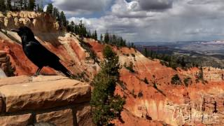 USA Monument Valley and Bryce Canyon 2017